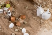 Fotografie Quail and chicken eggs