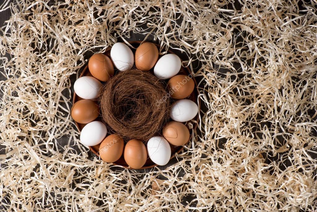 Chicken eggs and nest