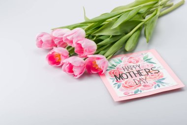 pink tulips and postcard