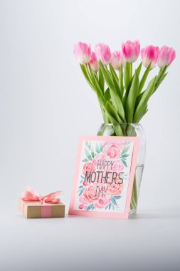 tulips, postcard and gift