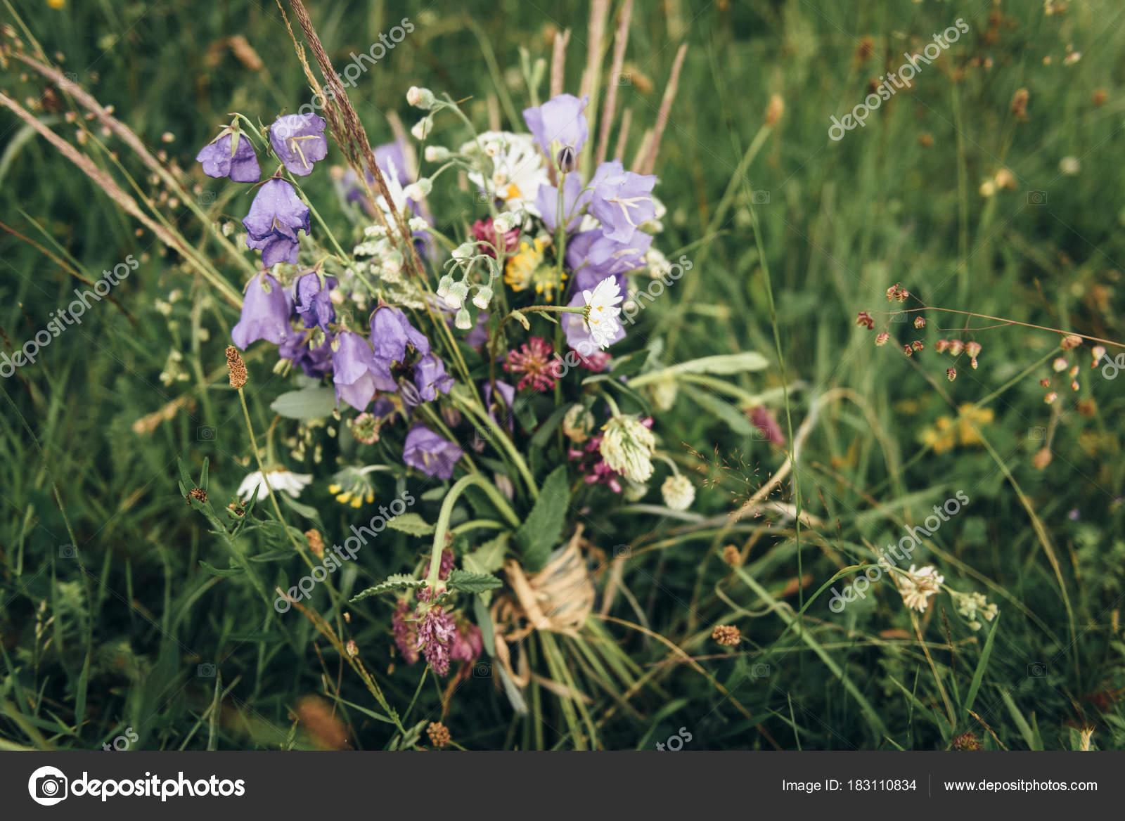 Фото цветов на склонах
