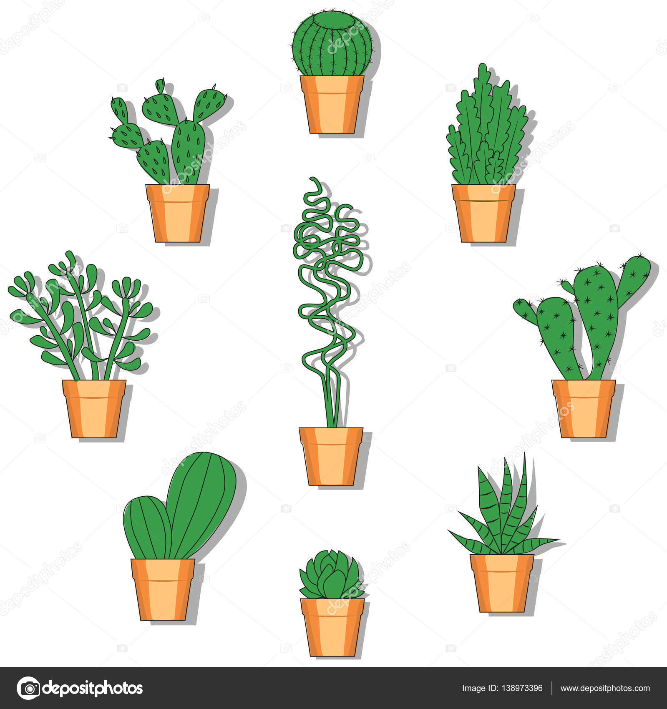 Kaktus-Vektor-Illustration. Hand gezeichnet-bunte Kaktus-set ...