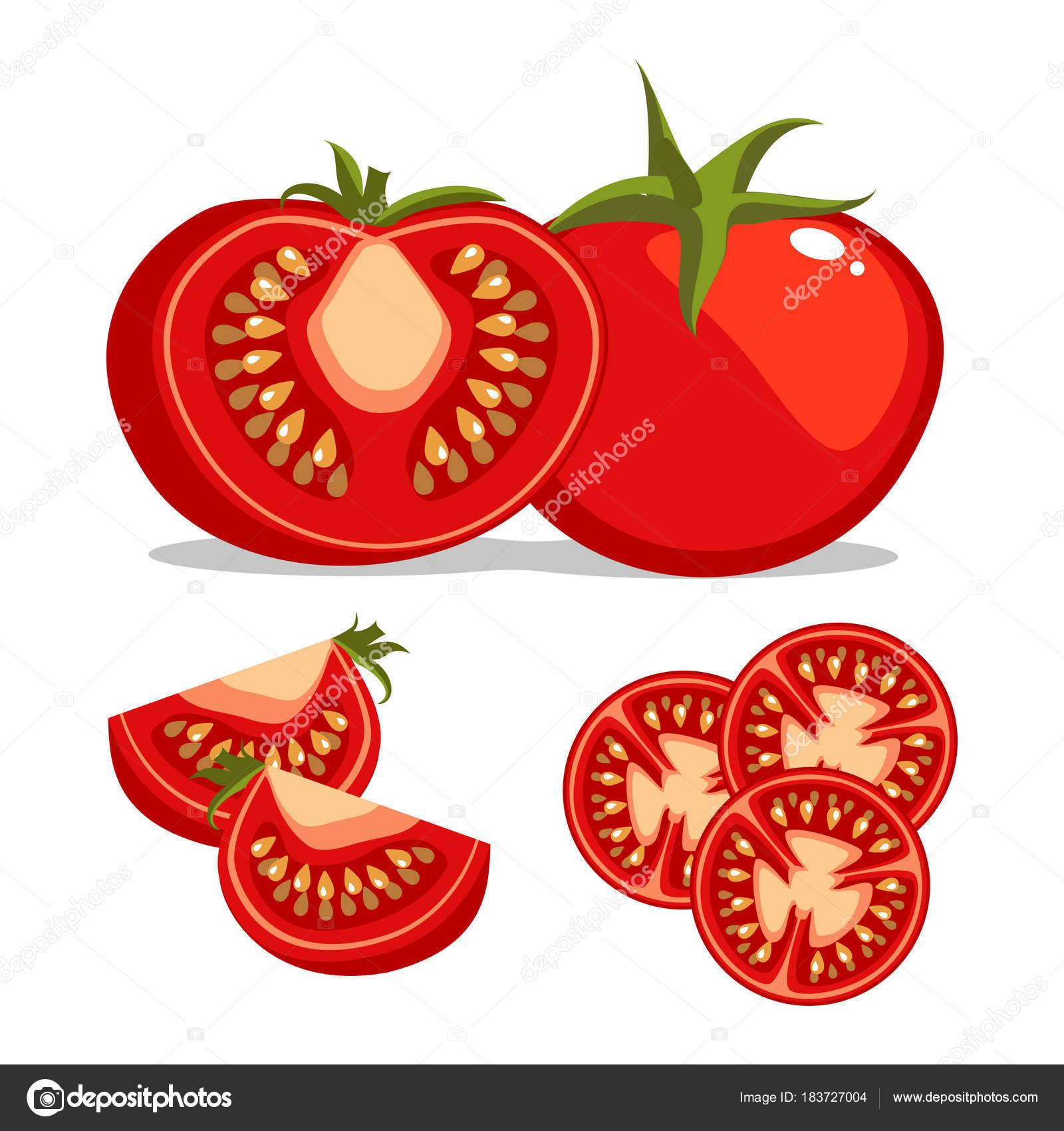 Ensemble de tomates diff rentes isol sur fond illustration de dessin anim entiers tranch s - Tomate dessin ...