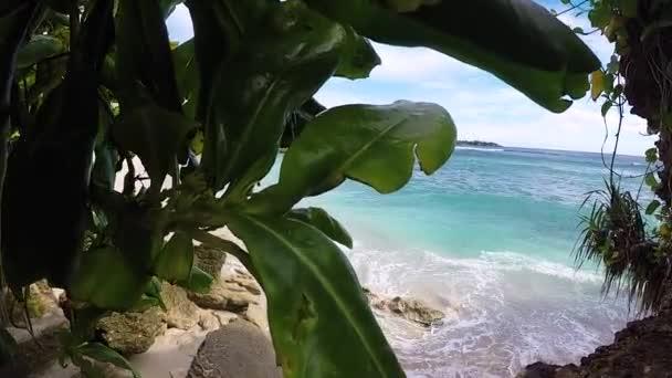 ein paar Palmen über der tropischen Lagune mit weißem Strand. paradiesische insel nusa lembongan, bali, indonesien. blaues Wasser und erstaunlicher Himmel. ruhiger Ort, keine Menschen. Zeitlupe.