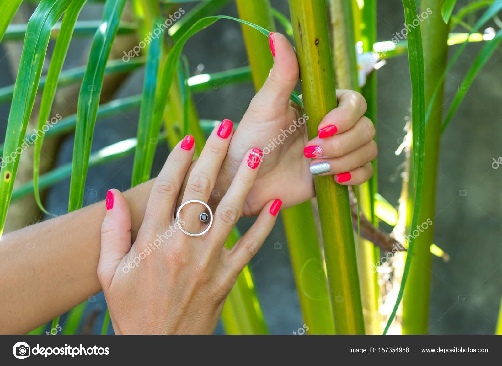 Primer plano de manos de una mujer joven con manicura rojo en las ...