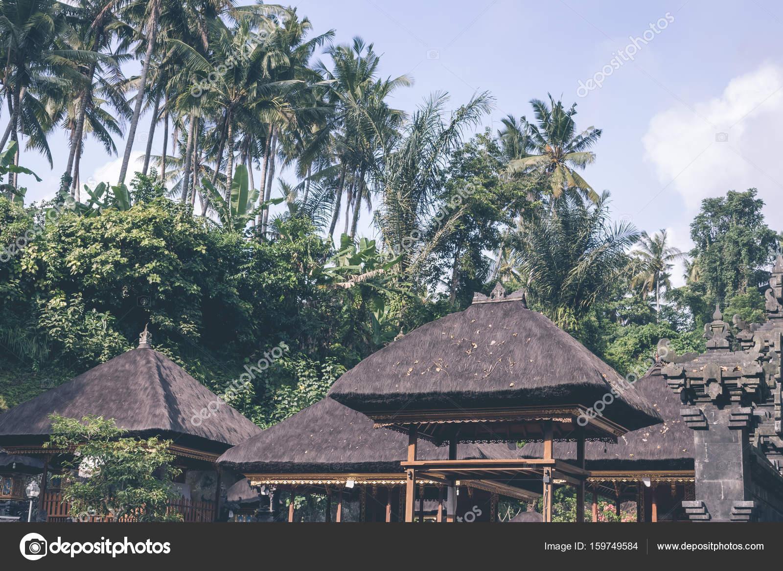 Onwijs Groene jungle op Bali eiland, Indonesië. Tropisch regenwoud scène BE-17