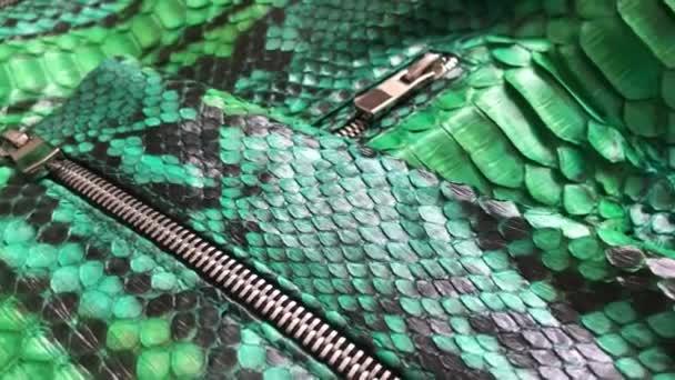 Green snakeskin python texture. Fashion luxury leather jacket close up.