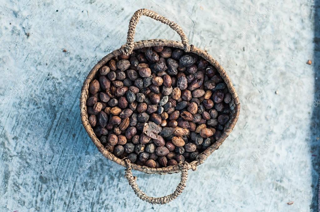 Dry Argan fruits
