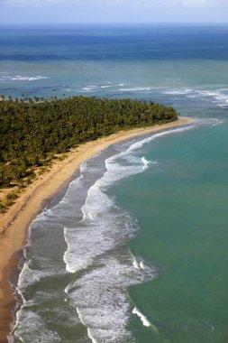 Aerial view of tropical island beach, Dominican Republic stock vector