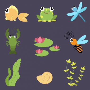 Flat design cute animals set. River life: fish, frog, dragonfly, crayfish, bee, water lily, shells and seaweeds.