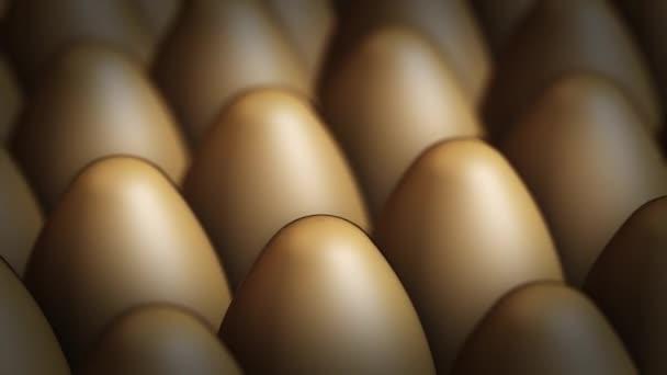 Panoraming videó, a barna tojás