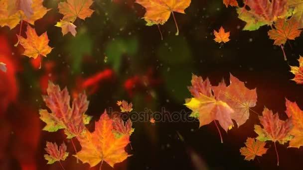 Padajícím zpomaleně a slunce svítilo podzimní listí opadá listí