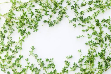 thyme leaves and twigs arranged in frame form isolated on white background