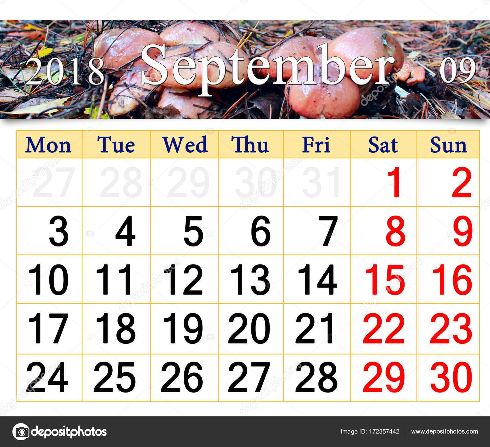 Calendario Funghi.Calendario Per Settembre 2018 Con Funghi Del Suillus Foto