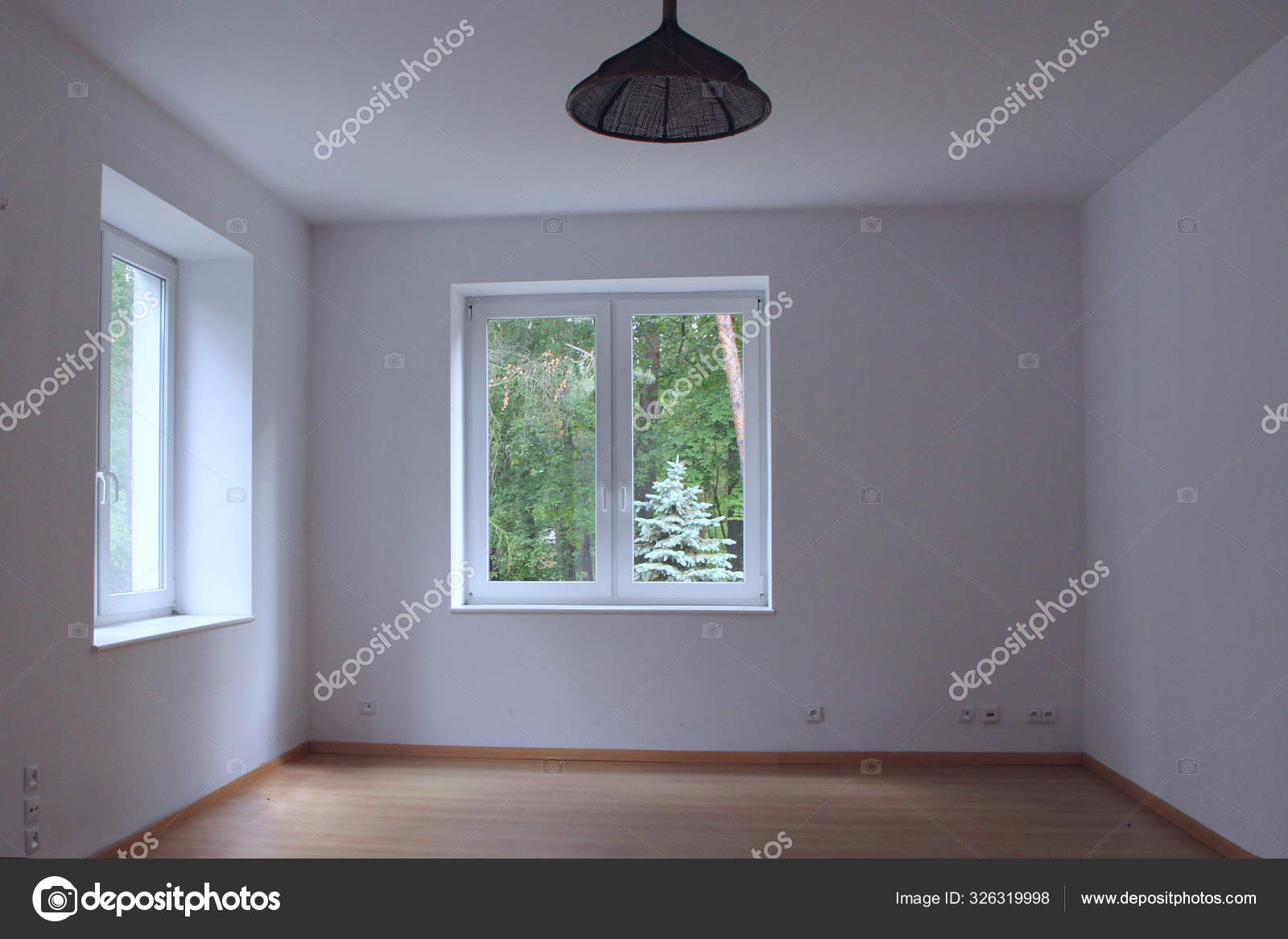 Empty clear room with window overlooking forest