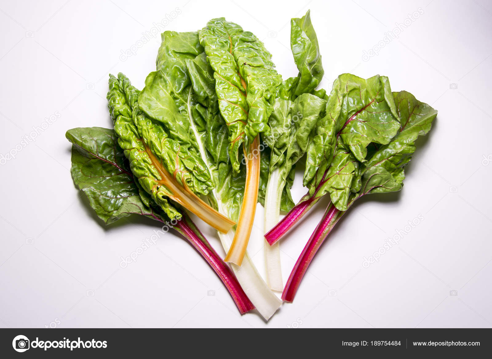 Rainbow Swiss Chard Mangold Beetroot Leaves Stock Photo C Andreionedrag81 189754484