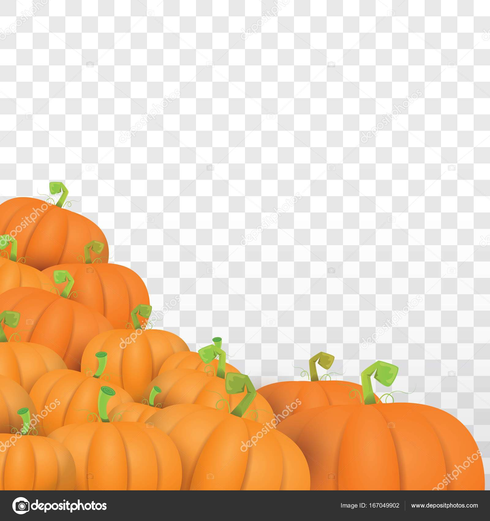 autumn vector orange pumpkins border design template for banners and ...