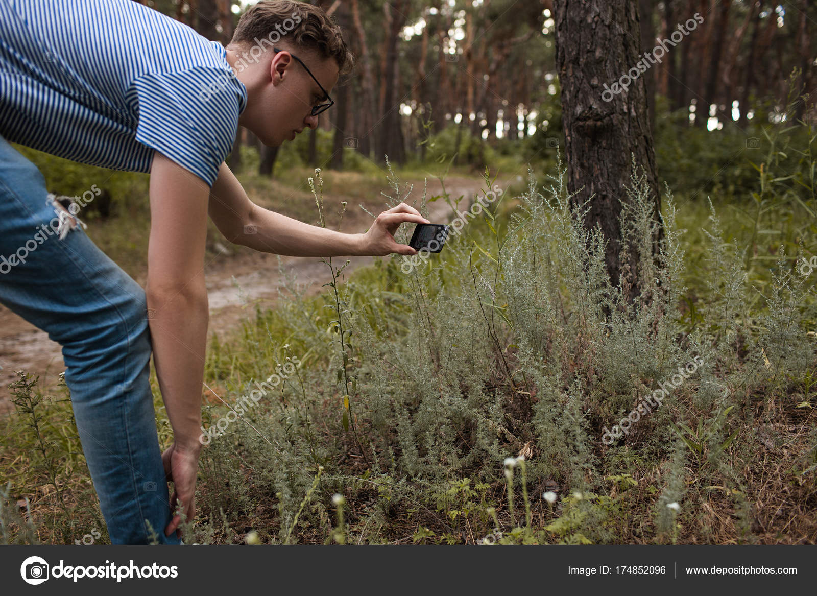 Camera texture create forest grass photo concept  — Stock Photo