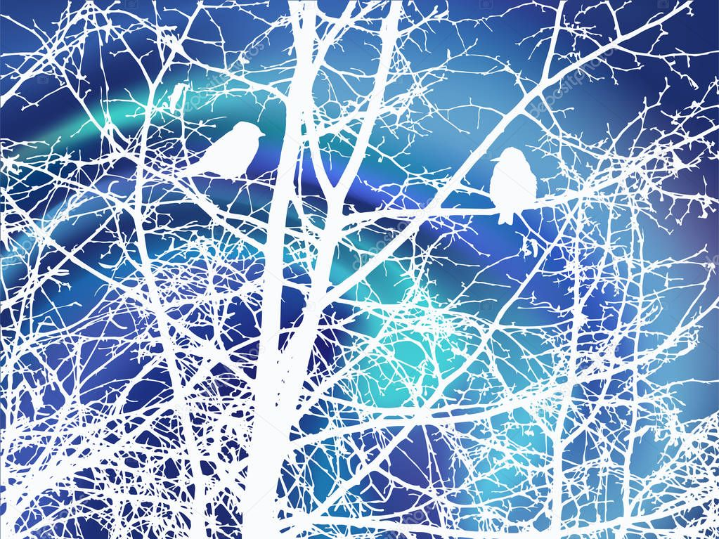 Branches of trees and birds.