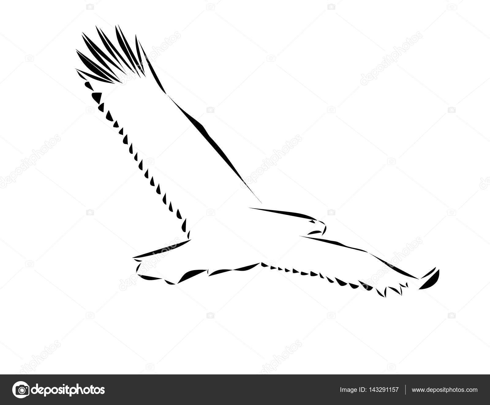 Tolle Adler Schematische Download Fotos - Der Schaltplan - greigo.com