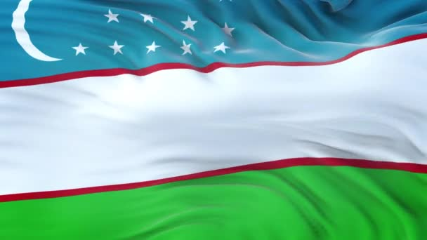Uzbekistan flag waving in the wind with highly detailed fabric texture. Seamless loop