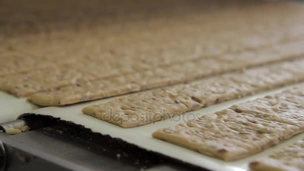 Dough biscuit running on conveyor belt after automatic formation