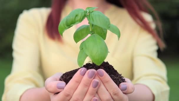 Young woman stands and holds handful of earth and plant outdoor.