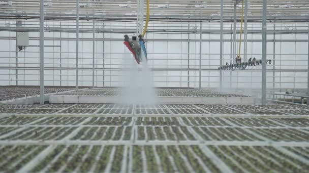 Industrial greenhouses large in size using top automatic watering