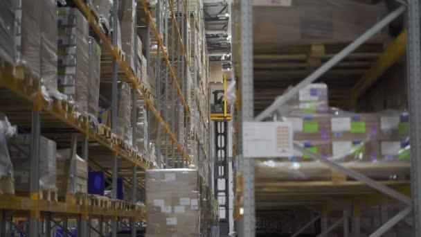 gépkocsit és villástargoncát használó raktármunkás, aki transznacionális exportra szállít kartonárut