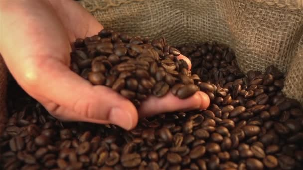 Video z kontroly kávová zrna v reálném Zpomalený pohyb