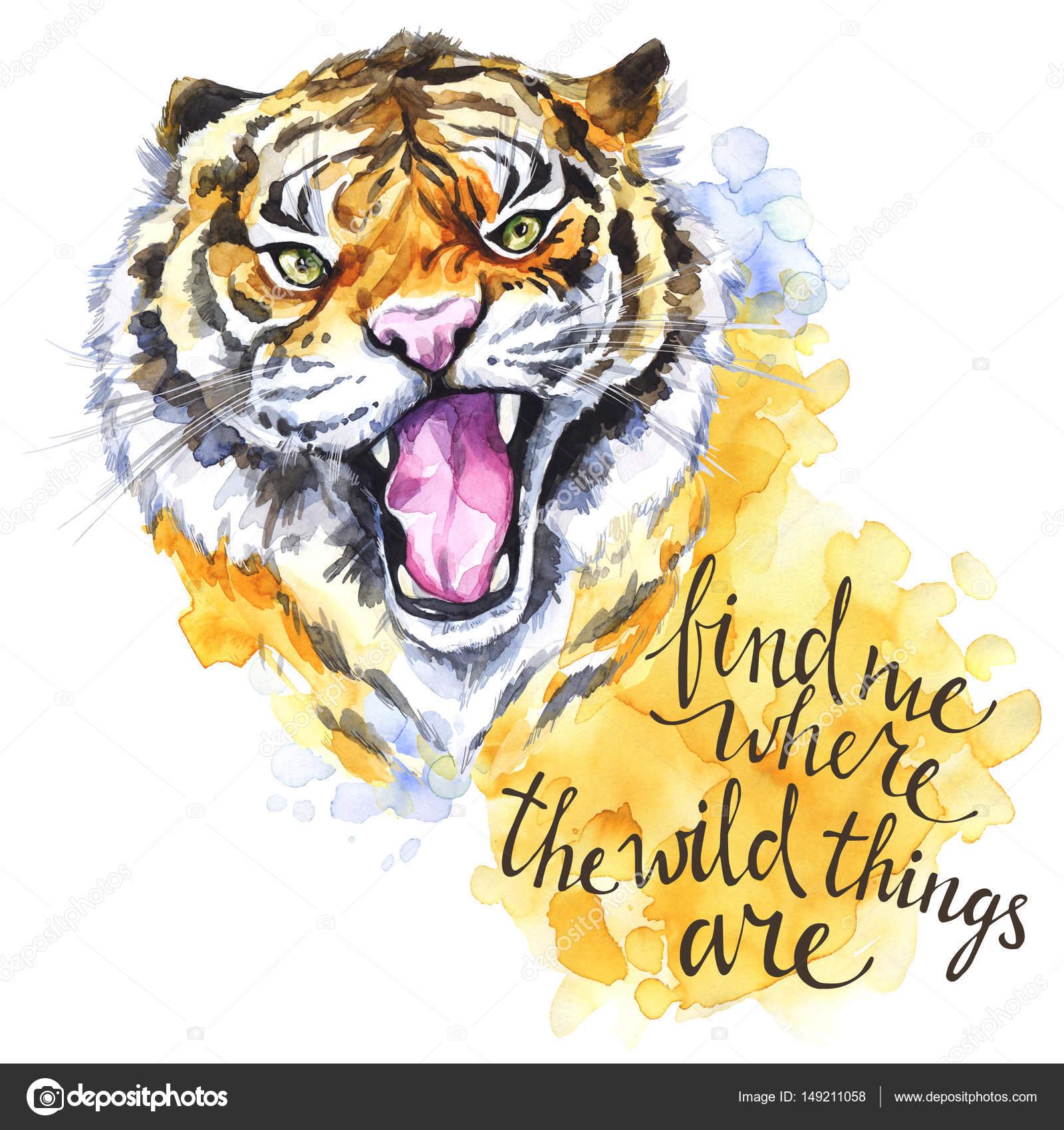 Imágenes Tigres De Bengala Con Frases Roaring Tiger Con