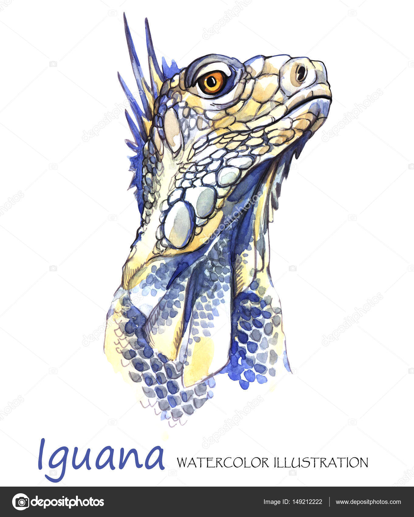 Watercolor Iguana on the white background. — Stock Photo ...