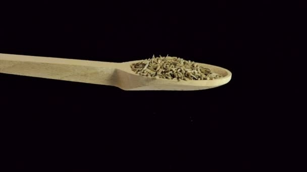 One spoon of cumin . Spices and food ingredients.