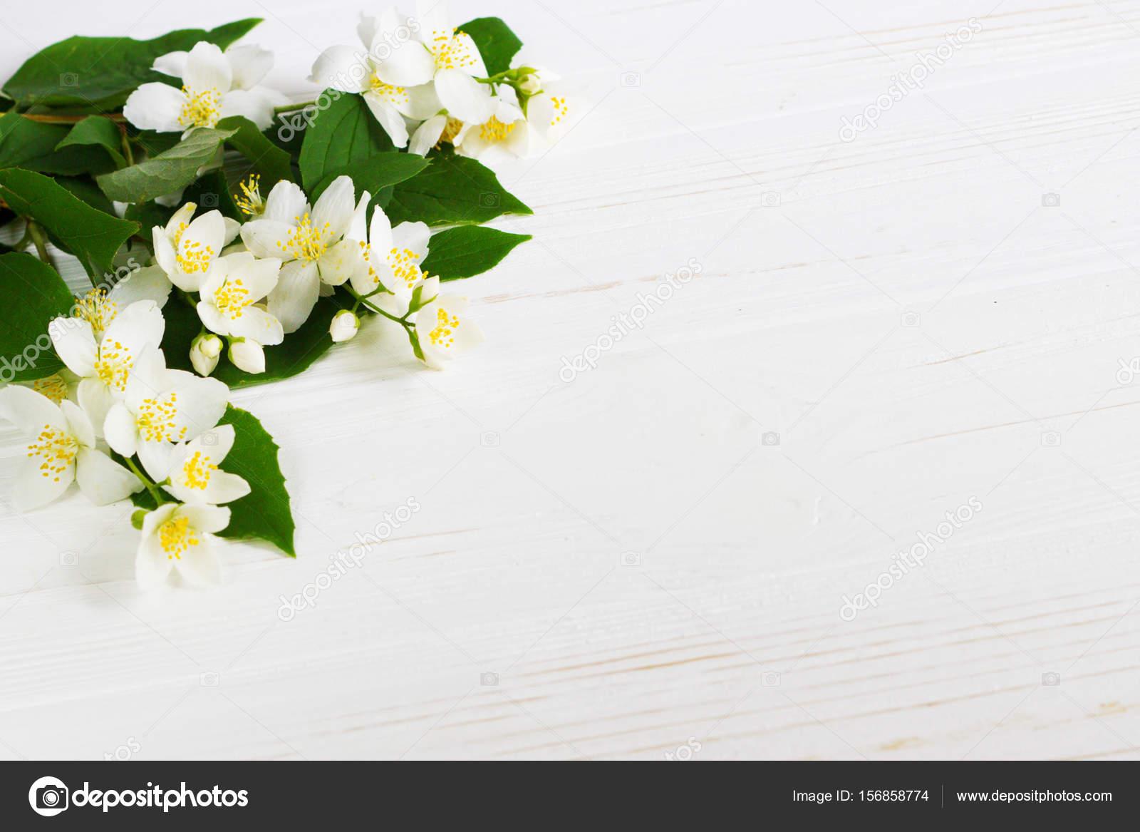 Fleur De Jasmin Sur Table En Bois Carte De Voeux Photographie