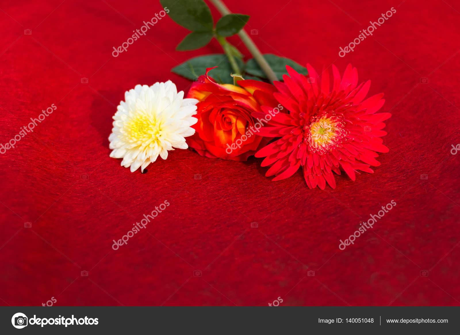 Happy Valentinstag, Valentinstag Feier, Blumen auf rot Belvel ...