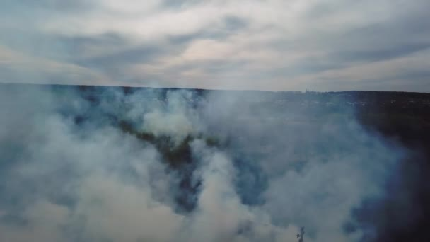Aerial view of big smoke clouds and fire on the field. Close up view of wildfire, spreading flames of forest fire