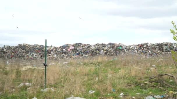 Pohled na otevřené skládky. Znečištění půdy