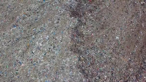 Odpad města. Koncept znečištění životního prostředí. Obrovská skládka odpadků. Ptáci krouží nad odpadky