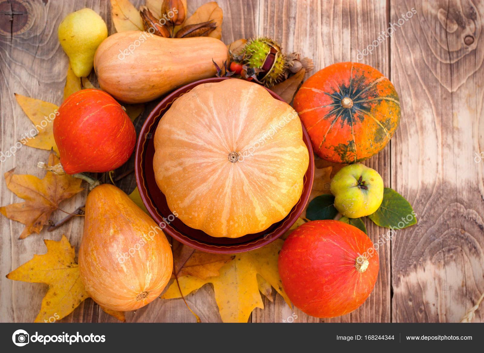 herbst obst und gemüse gesunde ernährung gesunde