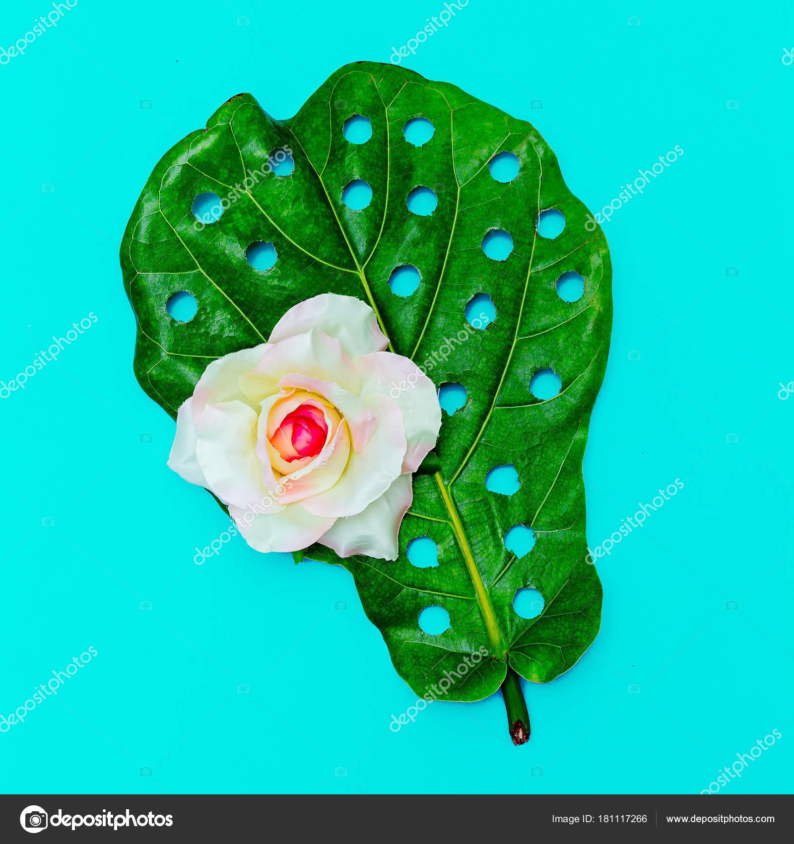 Loch-real Blatt und Rose Minimal Art Design. Flach zu legen ...