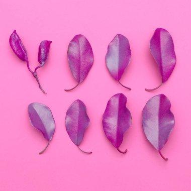Herbarium art.  Pink vibes. Leaves. Minimal art design. Flat la