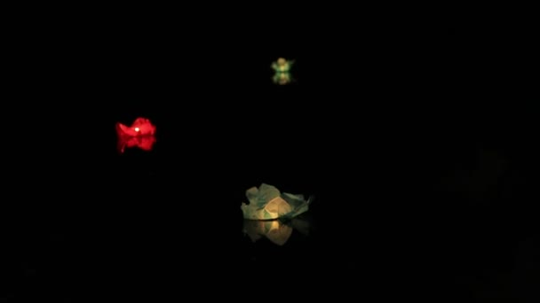 Floating Water Lanterns, medium shot