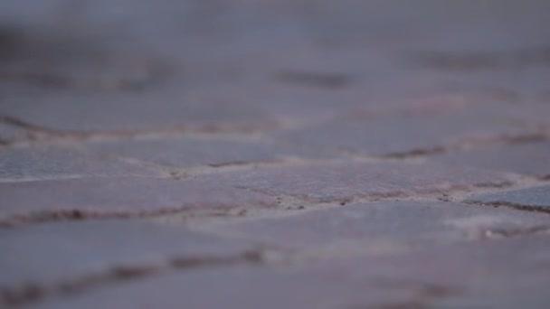 Dlažební kameny Road zblízka