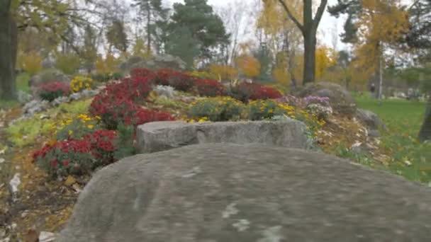 Krajina v parku květin a kameny
