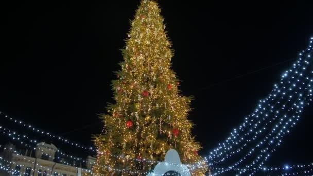 Karácsonyfa város központjában