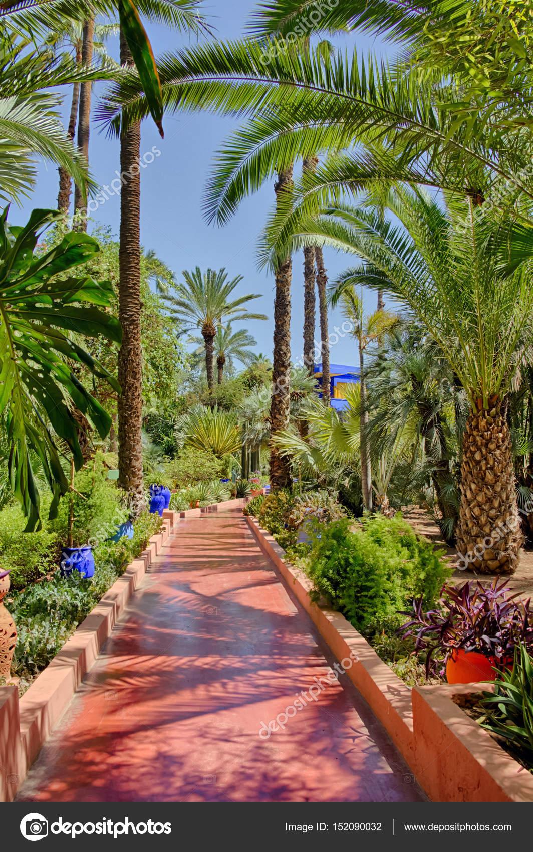 Jardin Majorelle En Marruecos Fotos De Stock C Nemesis2207 152090032