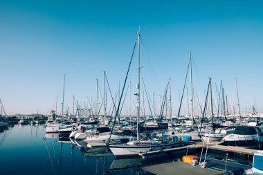 Sailboats and yachts in harbor