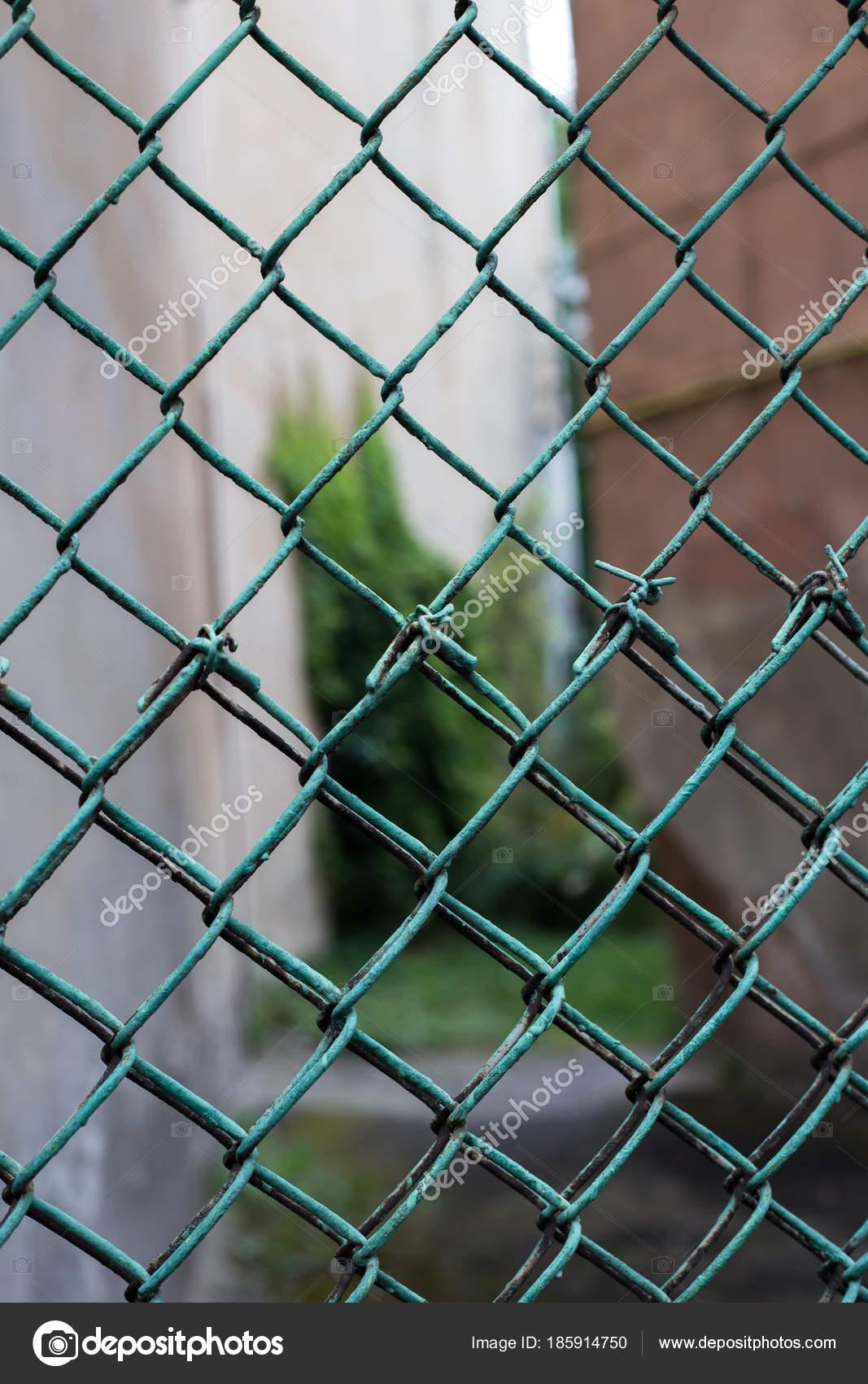 Grünes Drahtgeflecht — Stockfoto © Gladkov #185914750