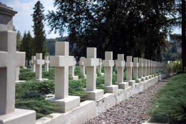 Rows of white gravestones on cemetery stock vector