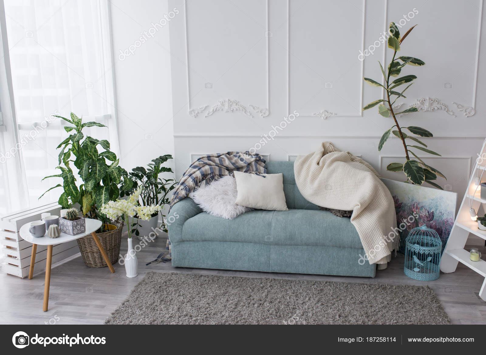 Blue sofa kamer paar kussens spreien liggen bank woonkamer buurt